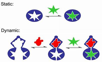 Dynamic Vs Cartoon Recognition Molecular Riconoscimento Molecolare