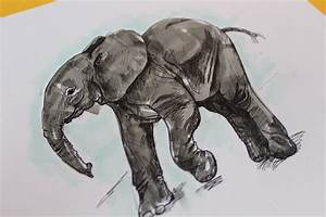 How To Draw An Elephant In Just 5 Easy Steps