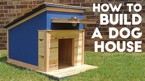 build  dog house modern builds