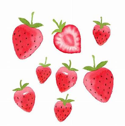 Clipart Strawberries Drawing Strawberry Watercolor Fruit Fragole
