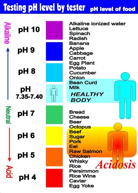 Ph Level Of Fruit Chart Bing Images Pineal Gland