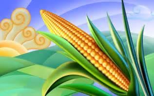 Corn Field Clip Art