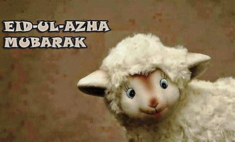 happy eid ul azha mubarak  wallpapers  cards