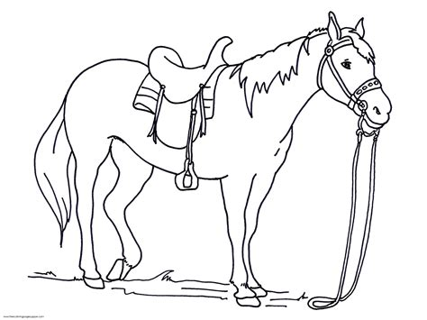 horse coloring pages print color craft