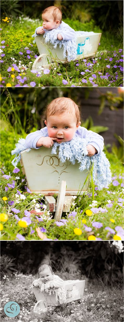 month   month  baby photography prop