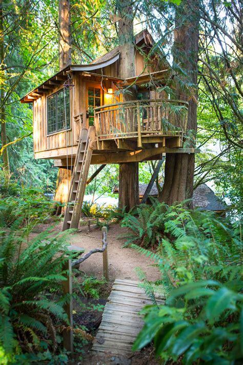 beautiful treehouses     world