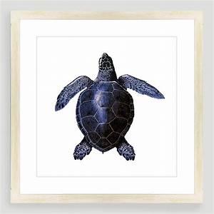 Vintage-Style Turtle Sea Life Wall Art World Market