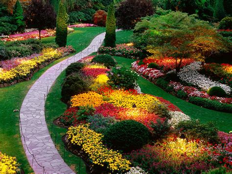 Floral Garden by Flower Garden Flower Hd Wallpapers Images
