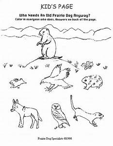 89+ [ Coloring Pages Of Tundra Animals ] - Zoo Coloring ...
