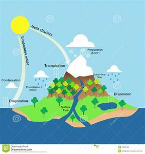 Water Cycle Illustration Stock Vector