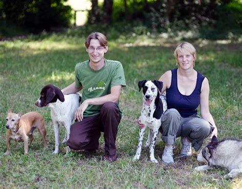 katzen und hunde zusammen halten urbandog