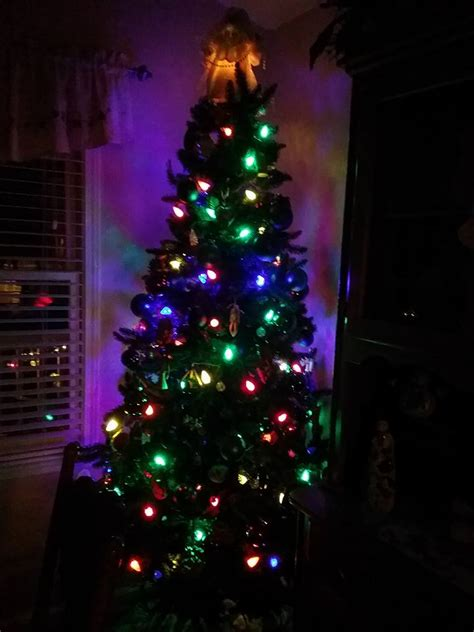 is a christmas tree a religious symbol o tree is the tree a pagan or christian symbol bellator christi