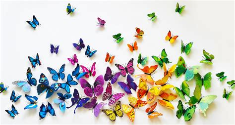 3D Butterfly Wall Decor $6.99 (Was $24.99)