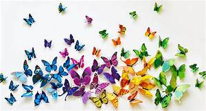3D Butterfly Wall Decor $6 99 (Was $24 99)