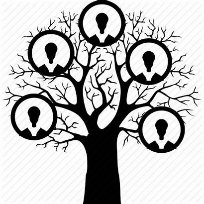 Tree Icon Genealogy Hierarchy Relative Structure History