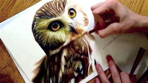 realistic drawing   owl youtube