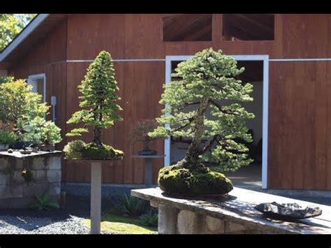 Japanischer Garten Münzesheim by The Garden Of Crataegus Bonsai In New Michael
