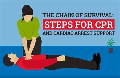 Cpr Survival Chain Cardiac Steps Arrest Support