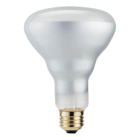 Br30 Halogen Flood Light Bulbs Bocawebcamcom