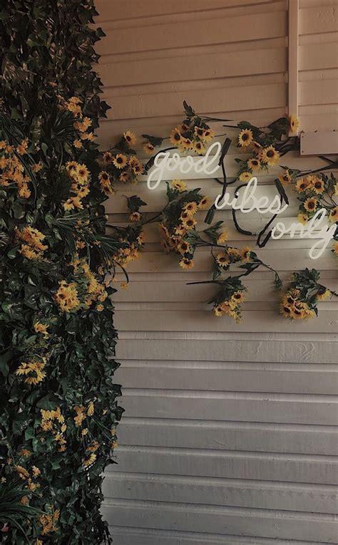 rayne1618 aesthetic wallpapers