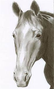 Horse pencil drawing by ChristianCowgirl116 on DeviantArt