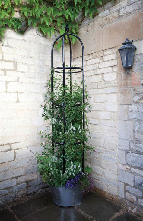 metal garden obelisk minster black metal garden obelisk by garden selections