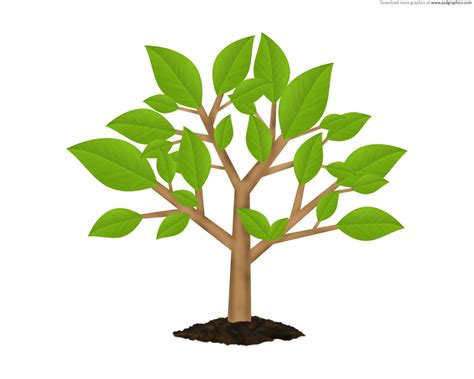 Tree Wallpaper Clipart by Small Tree Clipart 101 Clip