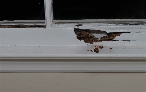 Replace Window Sill Outside by Repair A Rotted Window Sill Self Made Homes