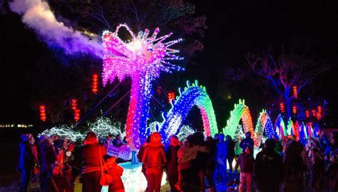 festival of lights florida chinese lantern festival coming to lowry park zoo