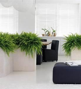Blumenkübel Als Raumteiler : blumenk bel raumteiler divide im greenbop online shop kaufen ~ Michelbontemps.com Haus und Dekorationen