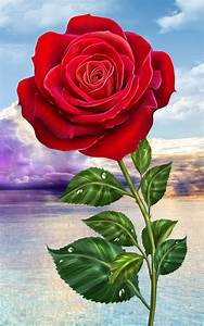 Rose. Magic Touch Flowers - Android Apps on Google Play