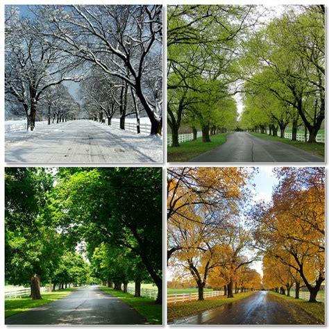 When Do You Capitalize Seasons?  Word Counter Blog