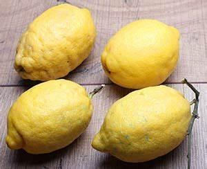 Wie Lagert Man Zitronen : zitronen rezepte mamas rezepte ~ Buech-reservation.com Haus und Dekorationen
