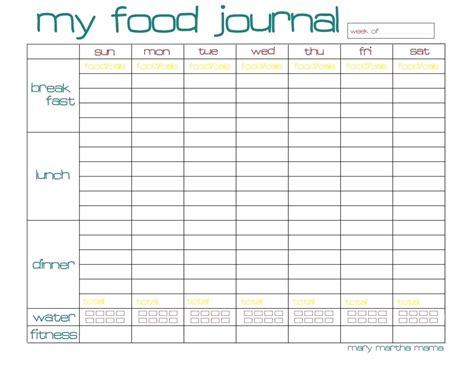 template food diary excel template