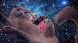 space cats space cats physics4me