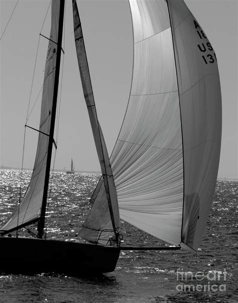 Sailboat Black And White by Sailboat In Black And White By Robert Suggs