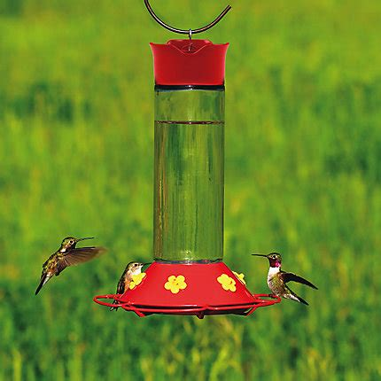 pets hummingbird feeders pet 174 our best glass hummingbird feeder perkypet
