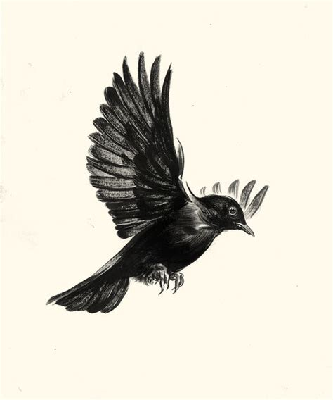 blackbird thigh piece and drawings on pinterest