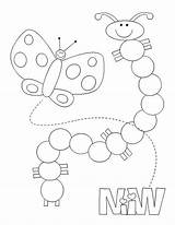 Caterpillar Coloring Butterfly Into Transformation Kidsplaycolor Caterpillars sketch template