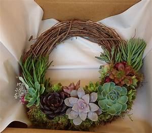 Succulent, Wreath