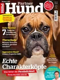 Partner Hund Abo Kündigen : geliebte katze magazin ~ Lizthompson.info Haus und Dekorationen