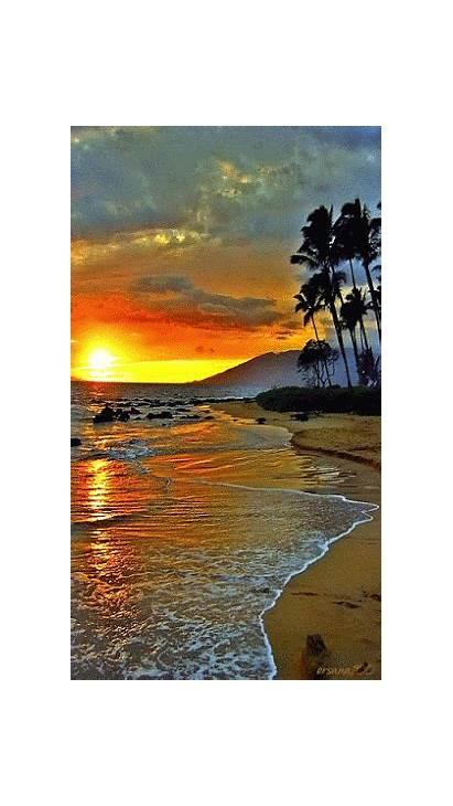 Mar Natureza Terra Gifs Sol