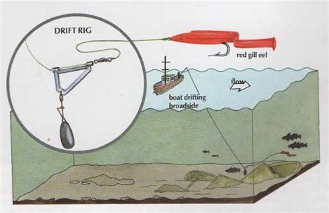 How To Fish For Cod From A Boat by Cod Fishing Rigging Pinterest Cod Fish And Fish