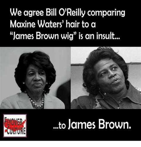 Maxine Waters Memes - we agree bill o reilly comparing maxine waters hair to a james brown wig is an insult to james