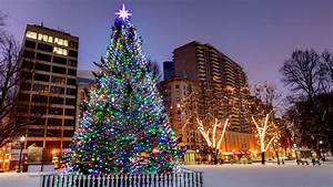 boston christmas lights | Decoratingspecial.com
