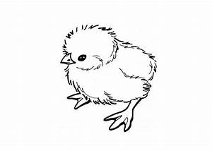 baby-chick-coloring-pages-online-174116 « Coloring Pages ...