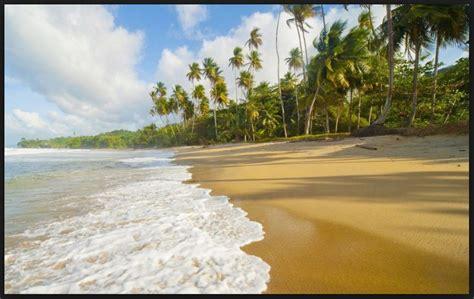picture  nature seashore hd wallpaper