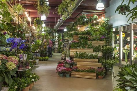 plant shed nyc best 25 flower shop displays ideas on flower