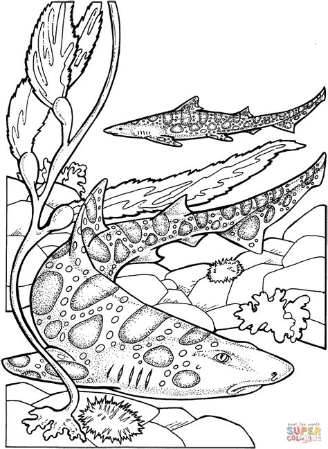 baby shark coloring pages coloring pages