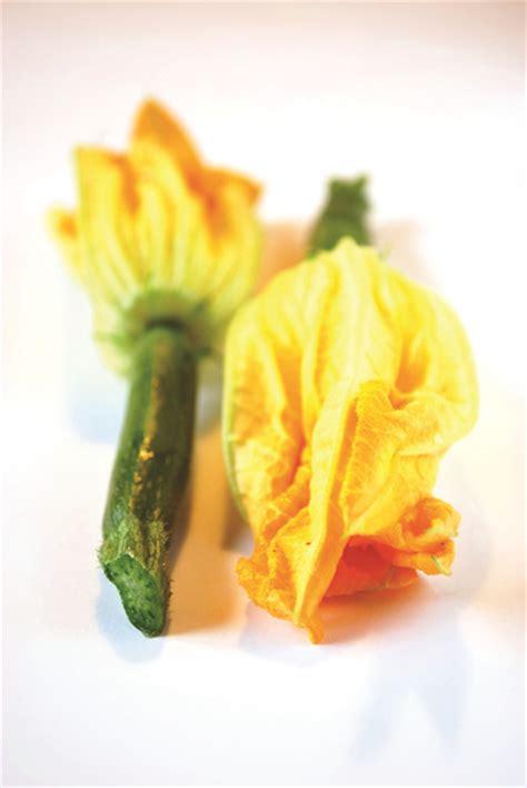 cuisiner les courgette cuisiner la fleur de courgette 28 images recette de